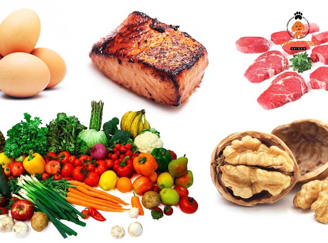 Cá là thực phẩm giàu protein và cần thiết cho Poodle
