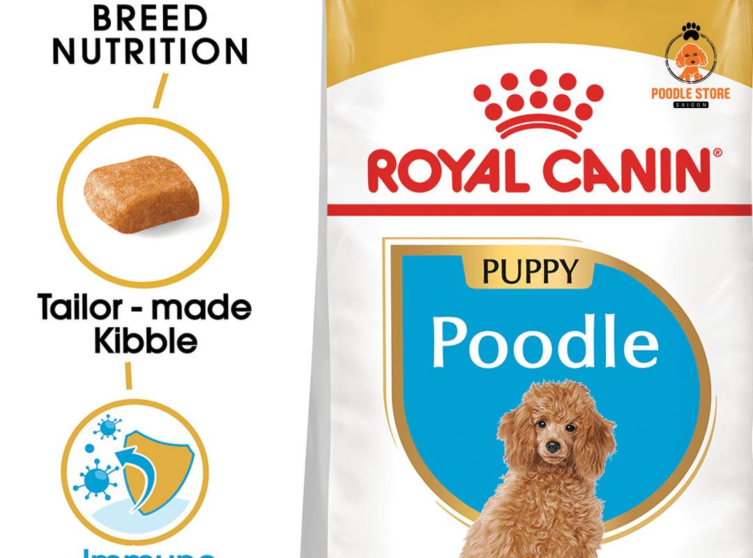 Poodle ăn loại hạt nào? Hạt Royal Canin Poodle là một trong những loại hạt dành riêng cho Poodle