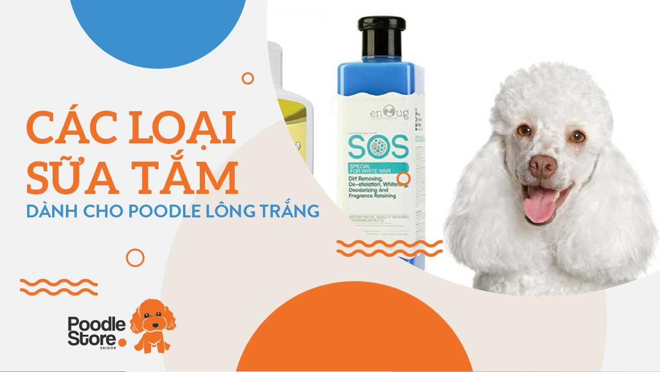 Các loại sữa tắm dành cho Poodle lông trắng